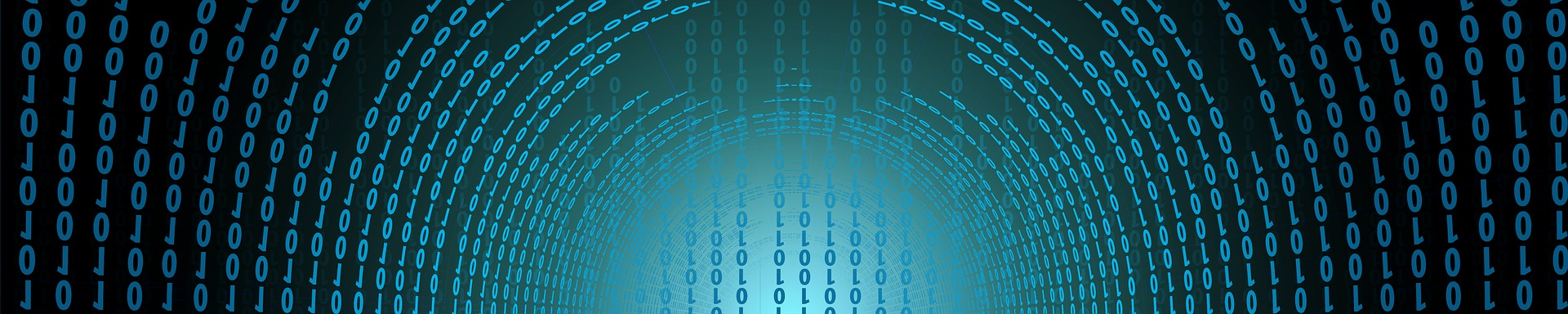 Numerique et sciences informatiques